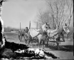 Transportation horse-drawn team & wagon bridge on roadway in background