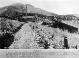 A gold mine in the Elizabethtown mining district, the deep tunnel at the foot of Old Baldy...