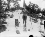 Girl on cross county skis with dog