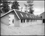 Chicken house, Skelton's Mtn. Ranch, Colo. Midland Ry.