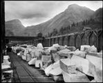 Receving [sic] and shipping yard, Colo. Yule Marble Co., Marble, Colo.