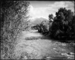 Vista of Mt. Sopris, Crystal River