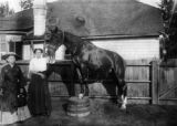 Mattie Silks & her own horse