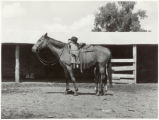 Little girl with mare, Warren Brewster ranch, Mont.