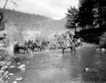 Army mules crossing creek, Italy