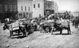 Leadville pack train