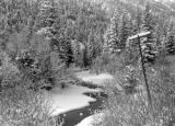 Creek near Hornbacks 1941