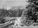 Adams Cabin in Mammoth Gulch 1944