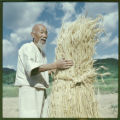 Man with bundle of thatch