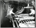 Swift and Company butchers on assembly line
