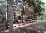 Winks Lodge: Picnic Area
