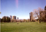 Cheesman Park with Skyscrapers and Mountains in Background