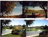 Collage of pictures of Utica street and Nettie Moore playground