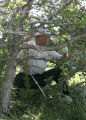 Nathan Green fights his way out os a tree where his opening tee shot landed on the first hole,...