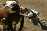 (Jefferson County, CO., June 22, 2004) Josh Domanoski, Brighton, is swung by a bull after getting...