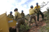 (GLENWOOD SPRINGS, Colorado... June 29, 2004) Prineville hotshots chip oak brush branches as...