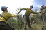 (GLENWOOD SPRINGS, Colorado... June 29, 2004) Twenty members of the Prineville Hotshots are doing...