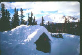 Polar Snow Trench on Monarch Pass: Winter Survival Outing - Monarch Pass, CO - Photo by Greg...