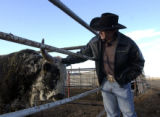 Kody Lostroh, a bull rider who is making a big mark on the  circuit this year, scratches the head...