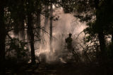 Smoke rises from a fire that destroyed over fifty acres in southern Douglas county Tuesday morning...