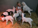 On March 14, 2006, Haystack Mountain Goat Dairy cheese maker Heidi Olson (cq) feeds baby goats...