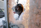 Jimmie Boykin (CQ) looks through the smashed glass of the entrance to the Argonaut Apartments he...