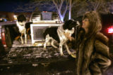 Patti Chant is reunited with Ben(left) and Dottie, two of four Border Collies returned along with...