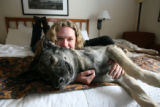 (DLM1131) -  Dorothy Yanchak and her dog Rin Tin Tin X rest at their hotel room in downtown...