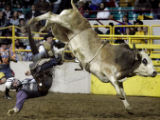 Jarrod Craig (cq) fromHillsboro,TX loses his battle with Sportsman during the final round of the...