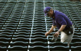 (Denver, Colo., May 11, 2004) Rockies Usher Dave Matsu, of Arvada, prepares the bleachers before...