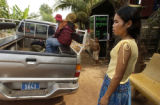 Kampong Thom,  Cambodia.  November 12, 2003.  Prostitute Srey Oun Sim, 24,  rt, stays behind as...