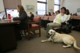 Ms. McGihon, left at testimony table, testifies as Boone, blonde lab on the floor listens with his...