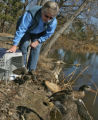 Linda Chameroy (cq), of Greenwood Wildlife Rehabilitation Sanctuary, releases a duck on private...