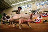 Brody Cress, 11,  of Hillsdale, Wyoming, shows his Reserve Grand Champion Hog, Mercedes. (STEVE...
