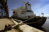 (CHURCHILL, MANITOBA-July 31, 2004)   The first grain ship of the season, the M/V  'Oriental',...