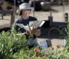 Denver Botanic Gardens volunteer Cathy Jo Clawson (cq), from Littleton, tries to figure out what...