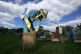 Beekeepers Duncan Williams (cq), left, cleans off a hive while Paul Limbach (cq), right rear,...