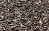 GUA101 - A panoramic view of around 1000 firearms that lay on the ground waiting to be destroyed...