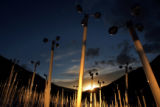 MJM234 The windmill project, which is a traveling environmental installation consists of about...