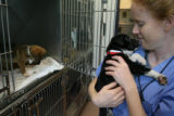 Alex Todiason, cq, veterinarian assistant with the Boulder Valley Humane Society visits with...