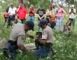 Shane Craig (cq), right, and Troy Florian (cq), both with Colorado Division of Wildlife, put a tag...