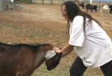 "Maxine Mager (cq) plays with a goat at her no-kill animal sanctuary ""Creative Acres"" in..."