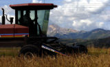 (ASPEN Colo., August 17, 2004) Bob Bloomfield cuts hay on Tom Moore's ranch in Aspen August 17,...