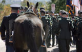 "The ""unmanned horse"" walks behind during funeral for Brigadier General Felix Sparks (cq)..."