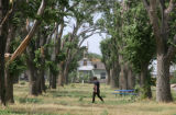 Construction worker Isaac Thompson (cq), 25, of Colorado Springs, walks past tornado-damaged trees...