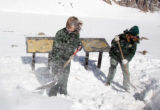 L to R: Lori Denton (cq) and Kelli Douv (cq), both of the U. S. Forest Service, shovel snow  at...