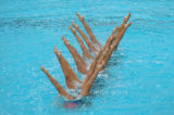 (ATHENS, GREECE-AUGUST 27, 2004)  Greece's Synchronised Swim Team dance with they're legs above...