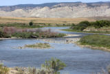 The Yampa River about 20 miles west of Maybell  at the Cross Mountain Turn Out  Wednesday  August...