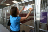 Lauren Varner,cq, of Denver looks at a profile of a dog at the Boulder Humane Society, Wednesday...