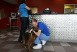 Lauren Varner,cq, of Denver fills out paperwork as Robbi Harris, cq, Boulder Humane Society Animal...